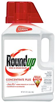 9. Roundup Weed and Grass Killer Concentrate Plus, 1/2-Gallon