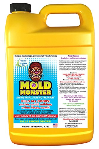 9. Mold Monster