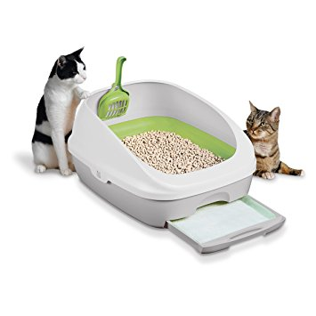 4. Tidy Cats Cat Litter, Breeze, Litter Box Kit System